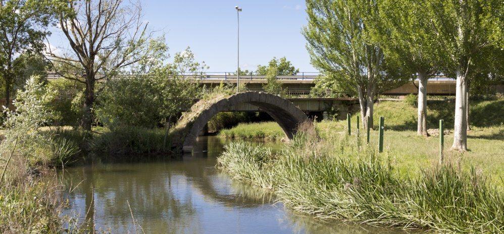 Arco del Puente del Jardin (4)