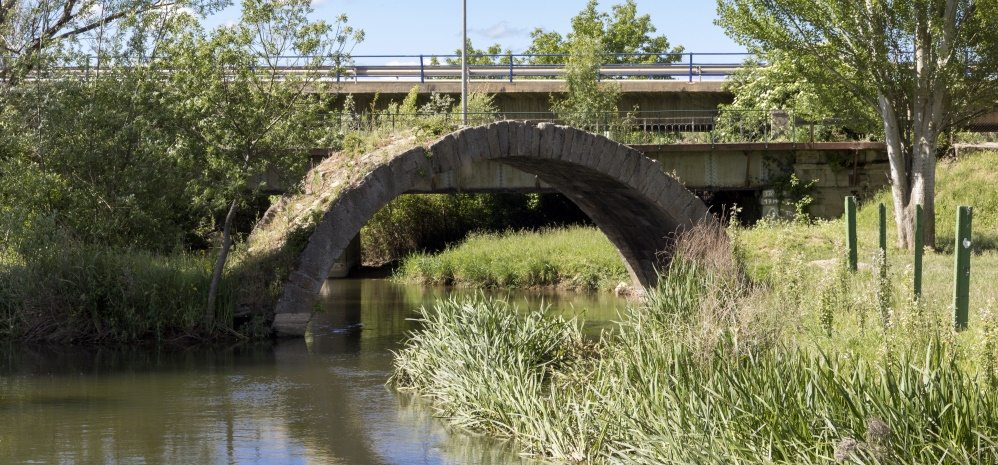 Arco del Puente del Jardin (5)