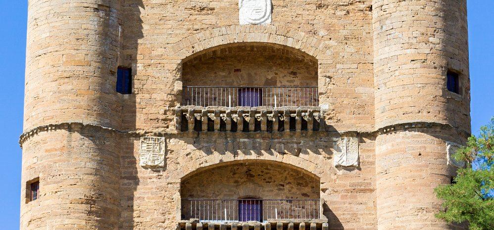Castillo de la Mota (Torre del Caracol) (10)