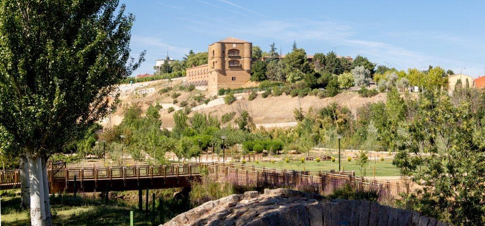 Castillo de la Mota (Torre del Caracol) (18)