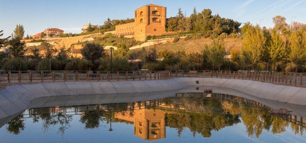 Castillo de la Mota (Torre del Caracol) (23)