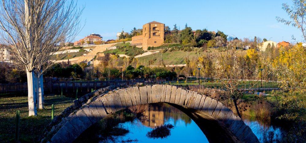 Castillo de la Mota (Torre del Caracol) (3)