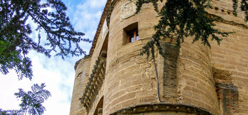 Castillo de la Mota (Torre del Caracol) (31)
