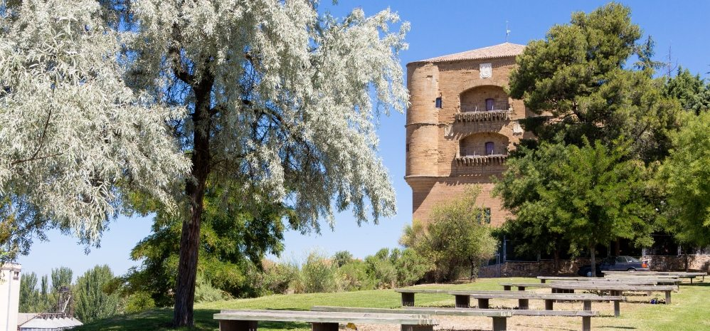 Castillo de la Mota (Torre del Caracol) (7)