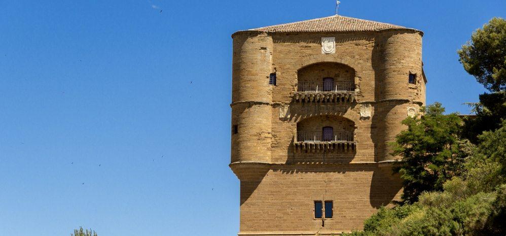 Castillo de la Mota (Torre del Caracol) (8)