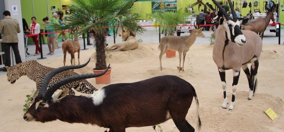 Feria de Caza y Pesca 2012 (109)
