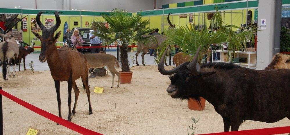 Feria de Caza y Pesca 2012 (110)