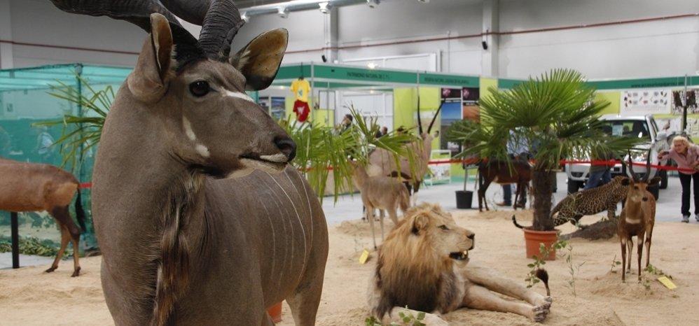 Feria de Caza y Pesca 2012 (111)