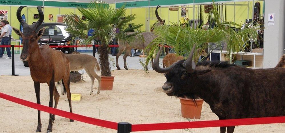 Feria de Caza y Pesca 2012 (71)