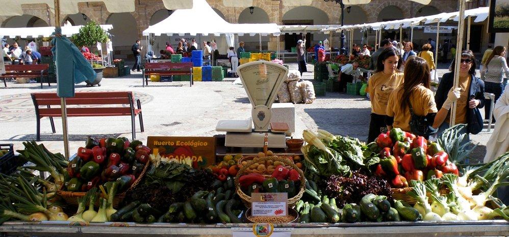 Feria del Pimiento (1)