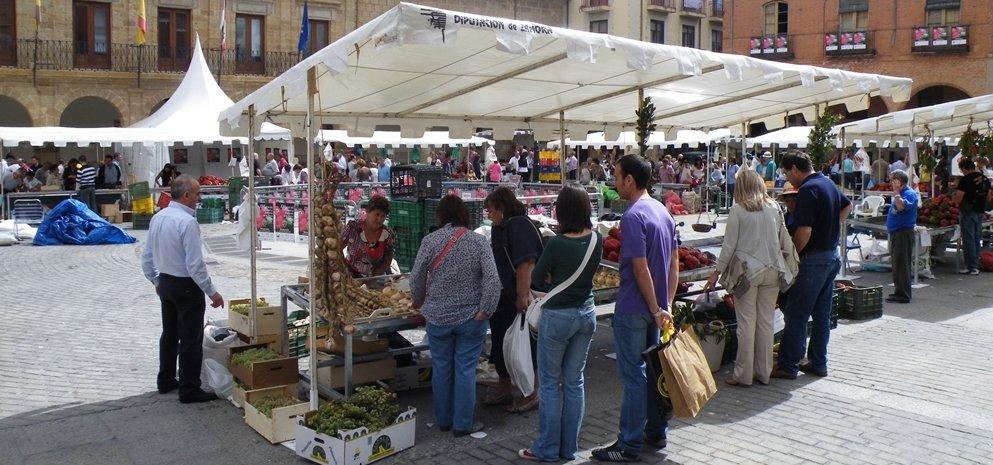 Feria del Pimiento (30)