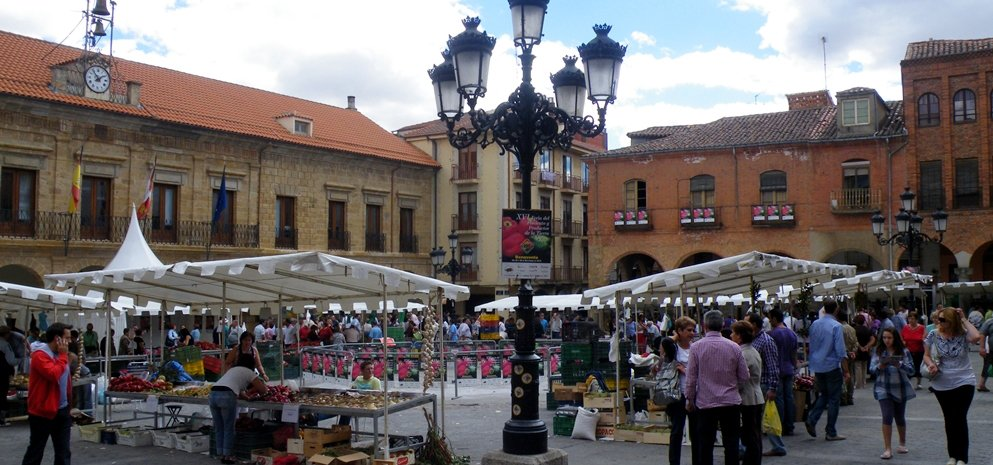 Feria del Pimiento (32)