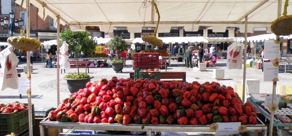 Feria del Pimiento (38)