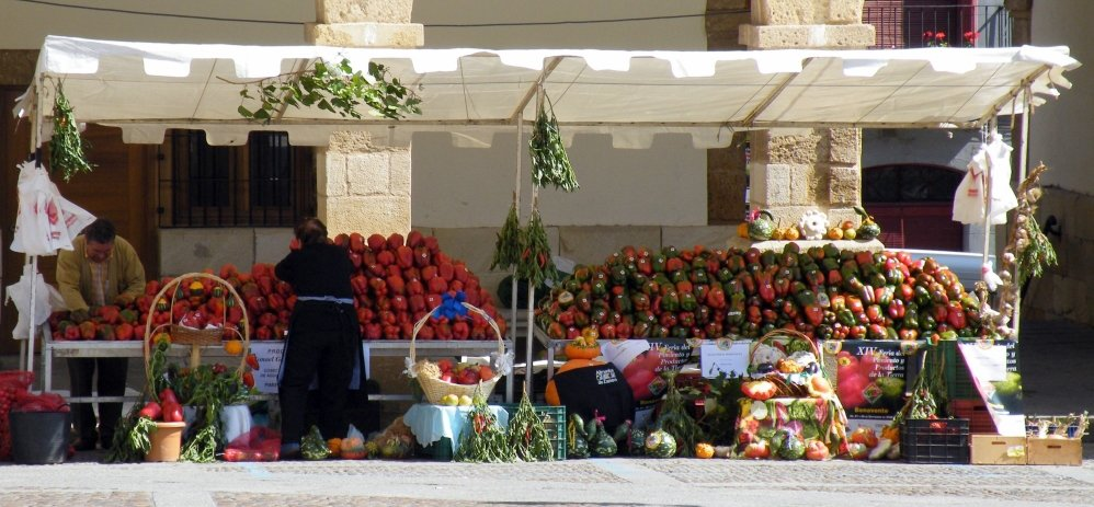 Feria del Pimiento (56)