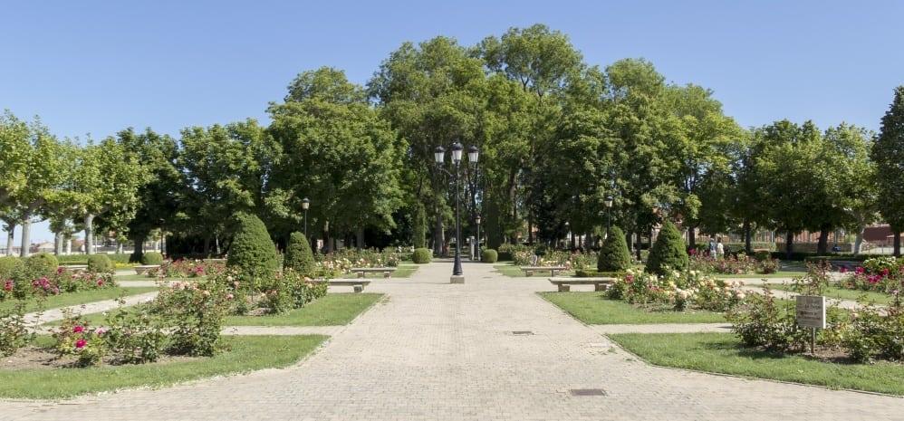 Jardines de la Mota (105)