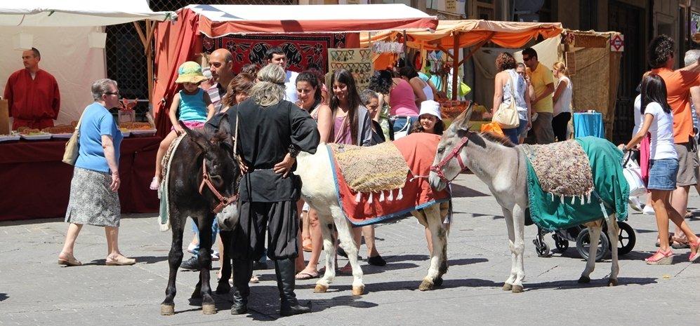 Mercado Medieval (107)
