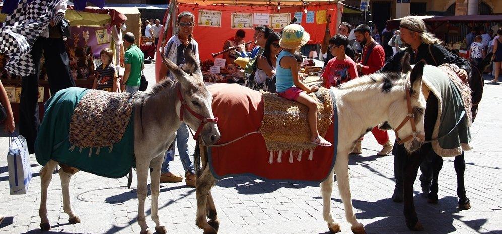 Mercado Medieval (15)