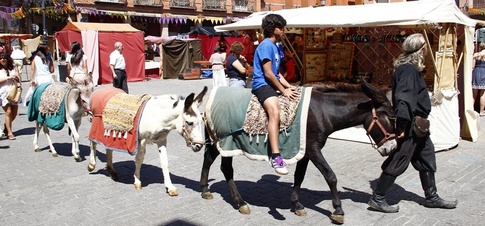 Mercado Medieval (2)