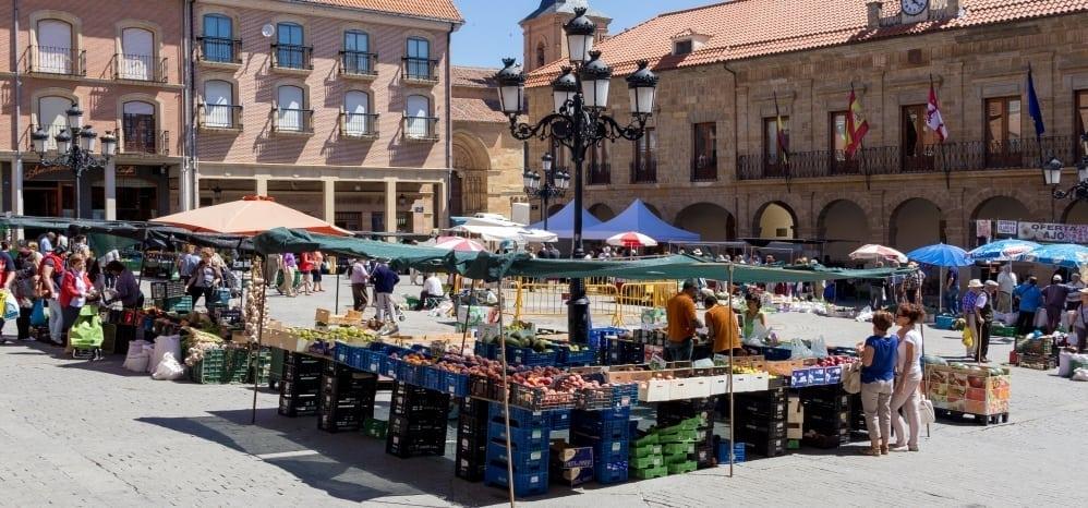 Mercado-de-los-jueves-benavente (3)