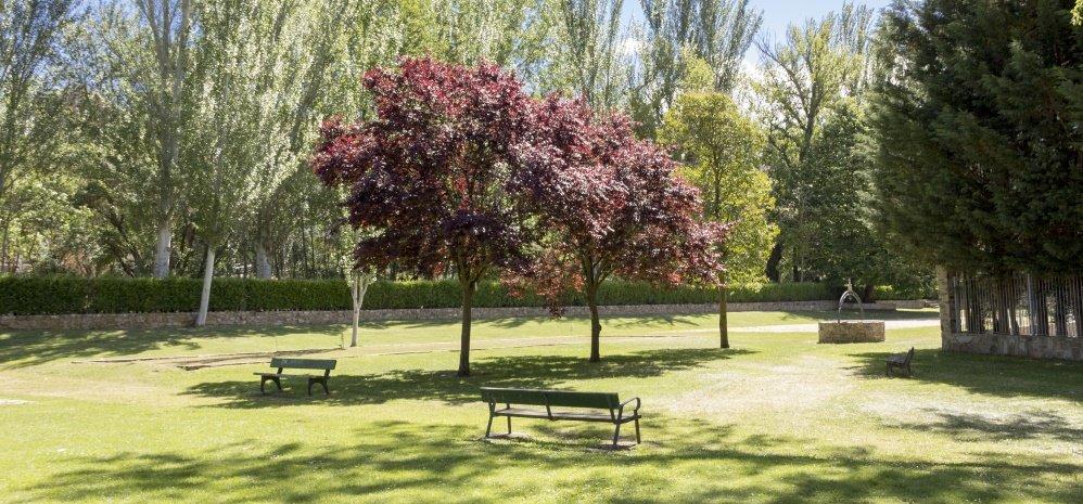 Parque de la Predera (152)