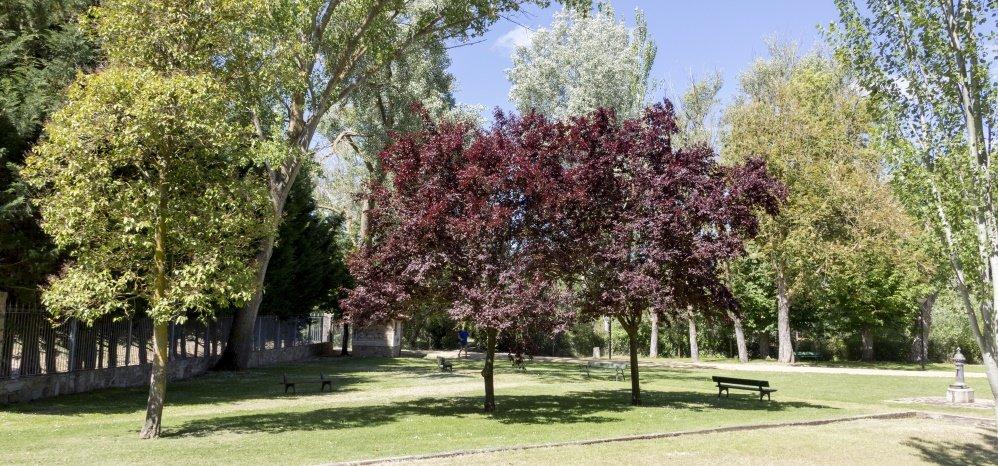 Parque de la Predera (153)