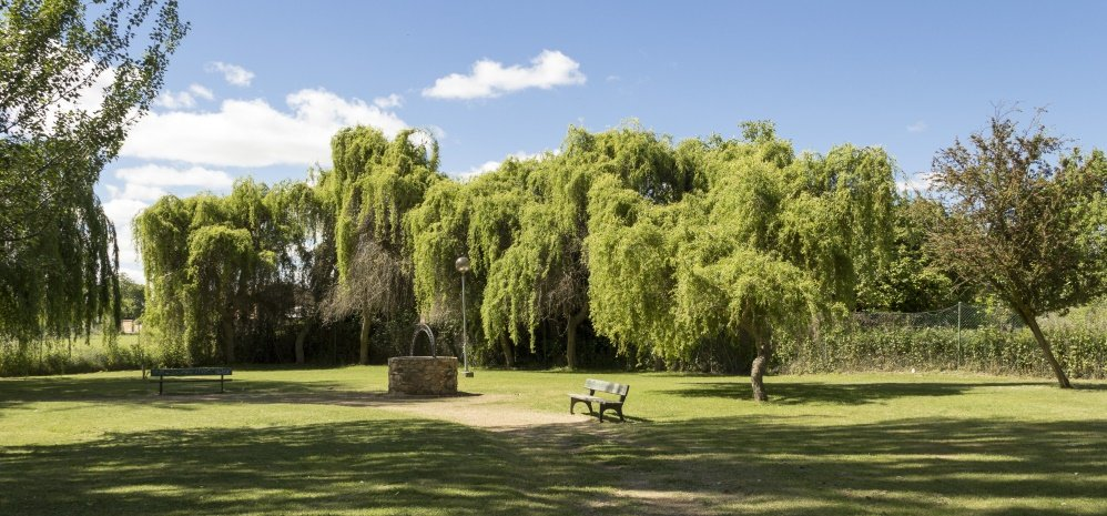 Parque de la Predera (160)