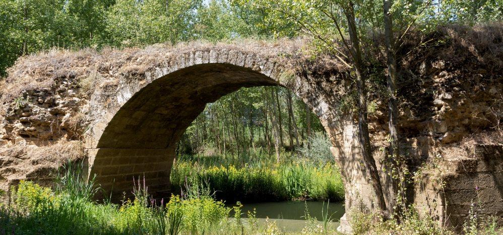 Puente Medieval sobre el Esla (3)