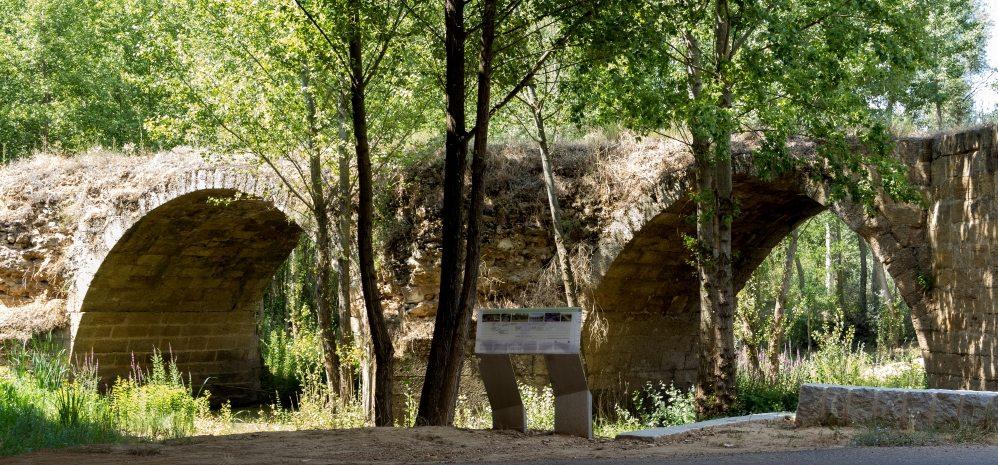 Puente Medieval sobre el Esla (4)