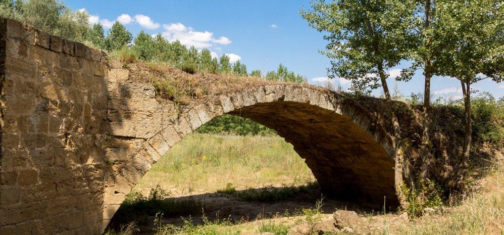 Puente Medieval sobre el Esla (5)