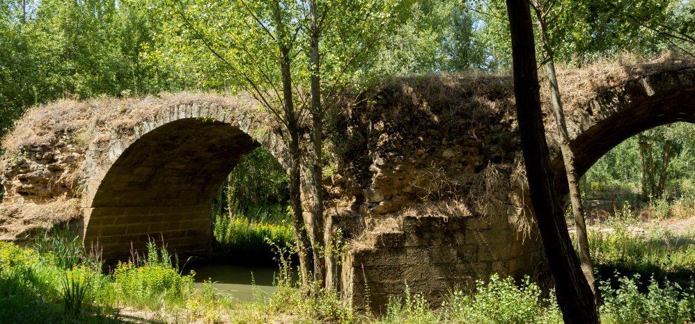 Puente Medieval sobre el Esla (6)