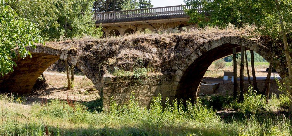 Puente Medieval sobre el Esla (7)