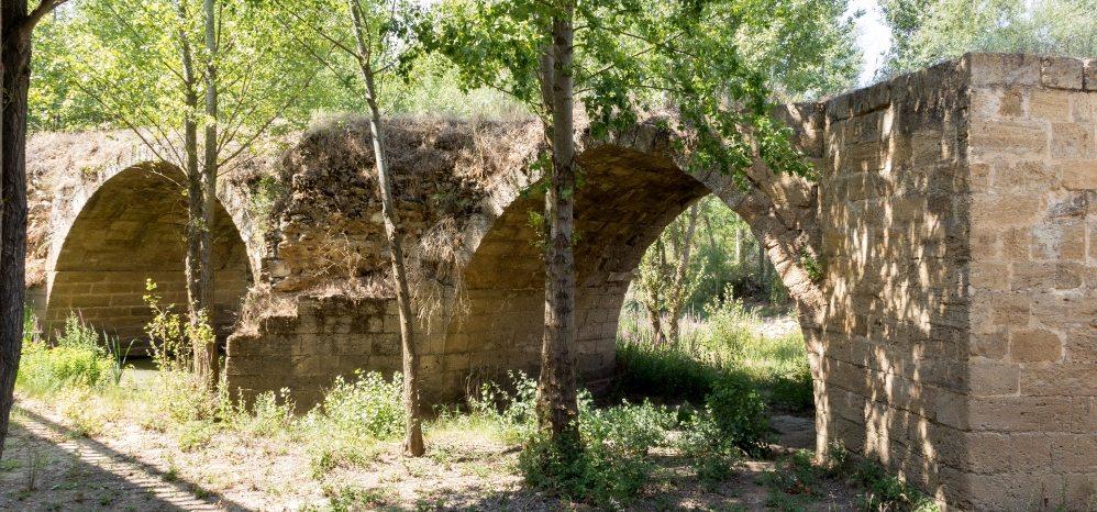 Puente Medieval sobre el Esla (8)