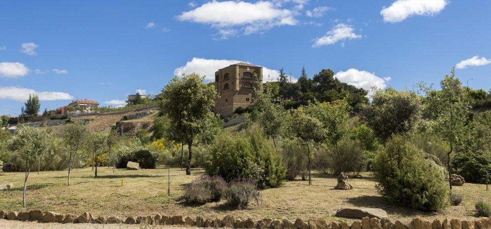 Jardin botanico Prado de las Pavas 2015 (1)