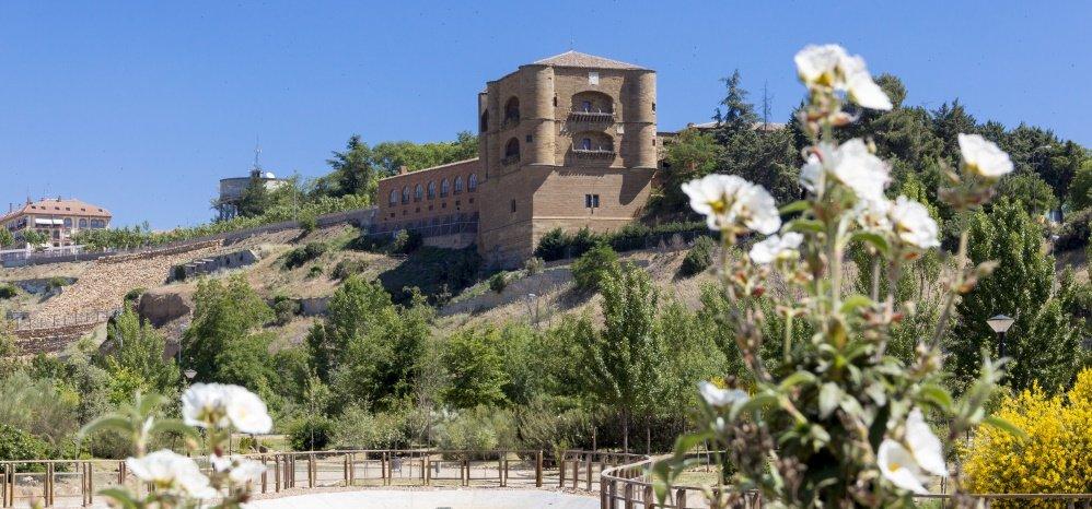 Jardin botanico Prado de las Pavas 2015 (14)