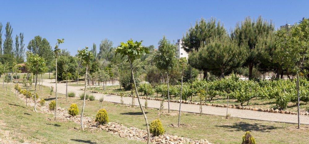 Jardin botanico Prado de las Pavas 2015 (21)