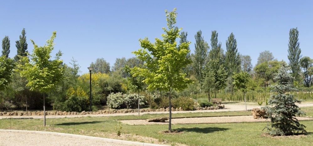 Jardin botanico Prado de las Pavas 2015 (24)