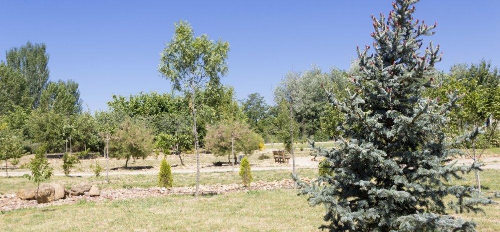 Jardin botanico Prado de las Pavas 2015 (26)