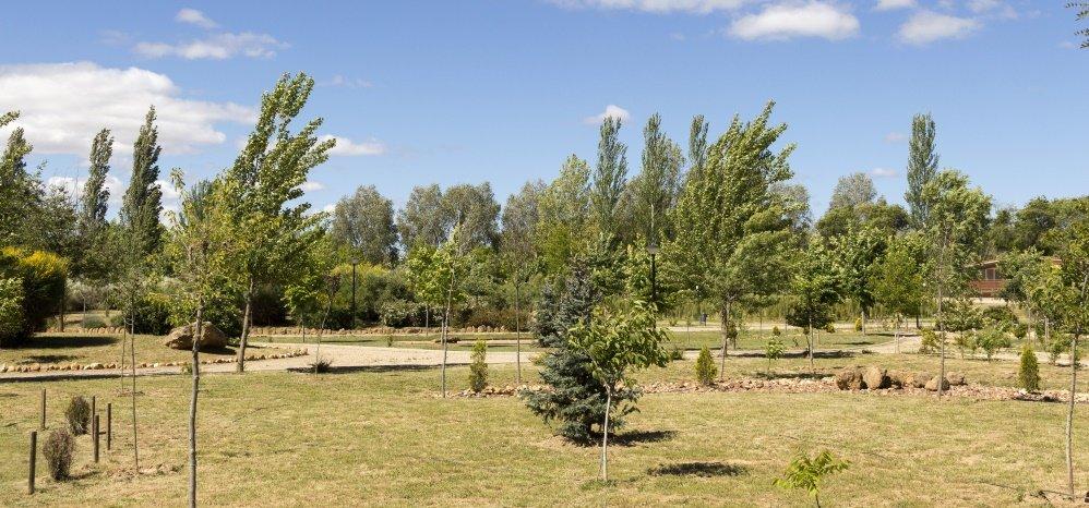 Jardin botanico Prado de las Pavas 2015 (31)