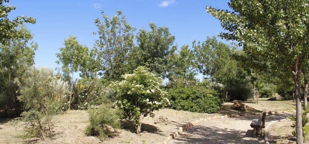 Jardin botanico Prado de las Pavas 2015 (44)