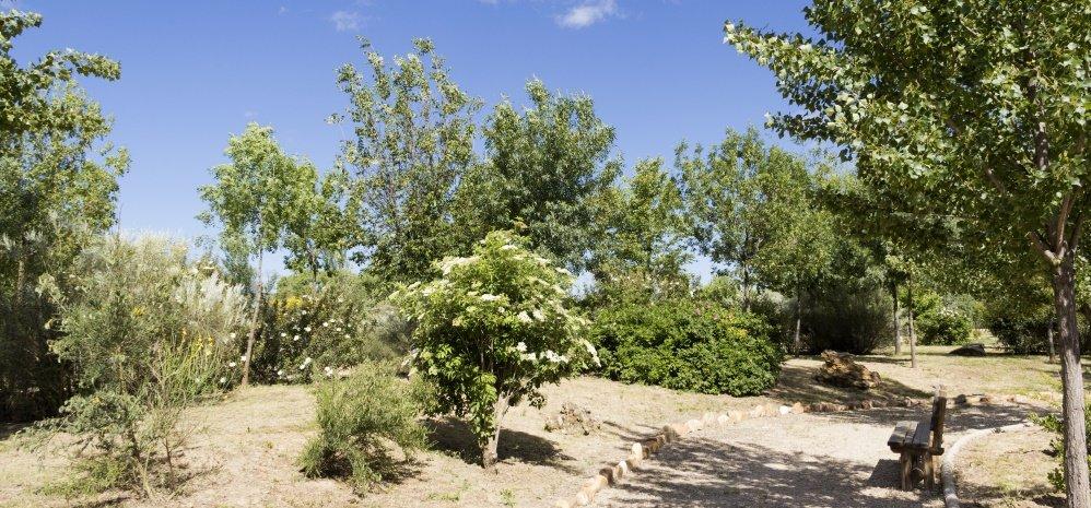Jardin botanico Prado de las Pavas 2015 (45)