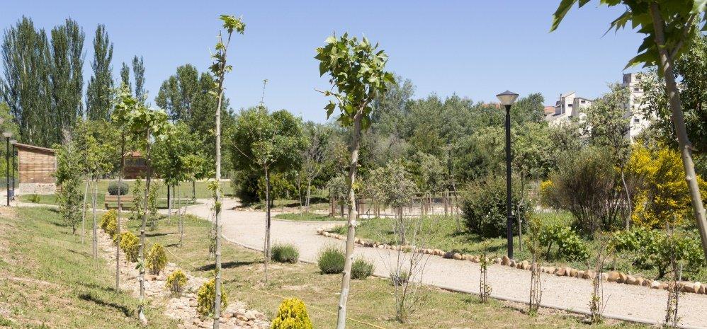 Jardin botanico Prado de las Pavas 2015 (52)