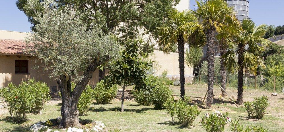 Jardin botanico Prado de las Pavas 2015 (6)