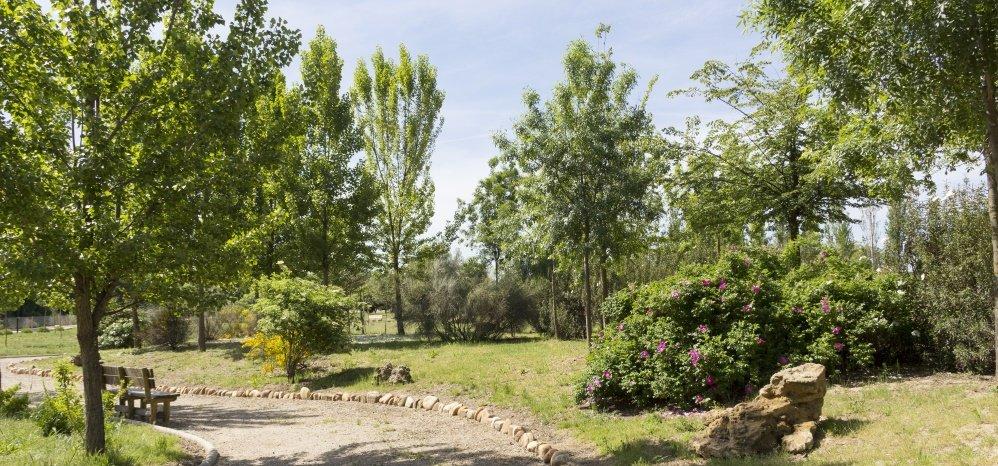 Jardin botanico Prado de las Pavas 2015 (61)
