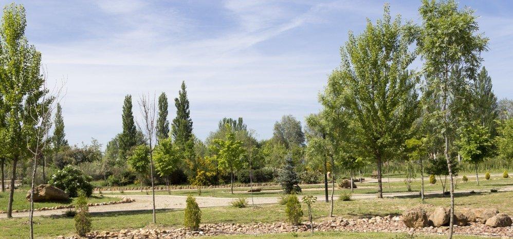 Jardin botanico Prado de las Pavas 2015 (62)