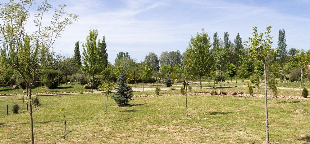 Jardin botanico Prado de las Pavas 2015 (63)