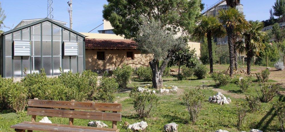 Jardin botanico Prado de las Pavas 2015 (72)