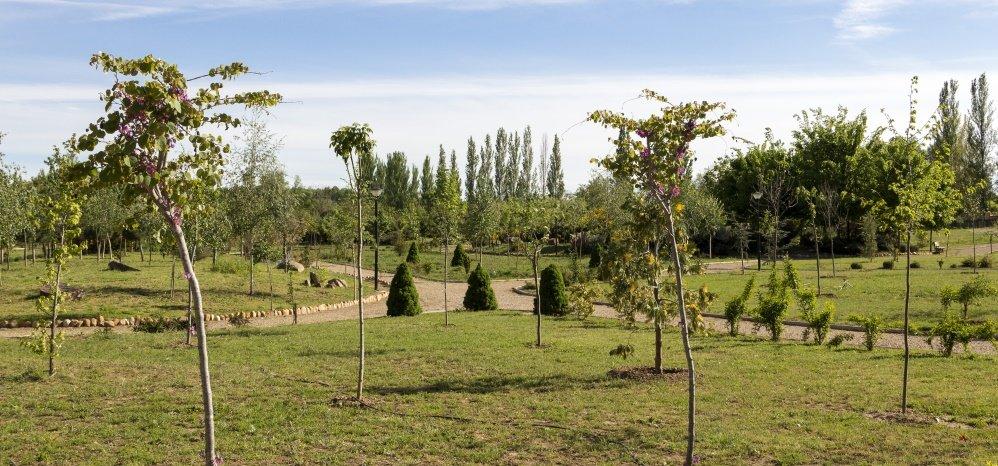 Jardin botanico Prado de las Pavas 2015 (78)