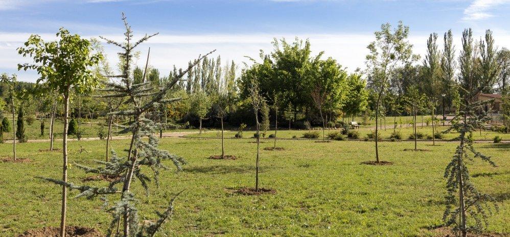 Jardin botanico Prado de las Pavas 2015 (79)