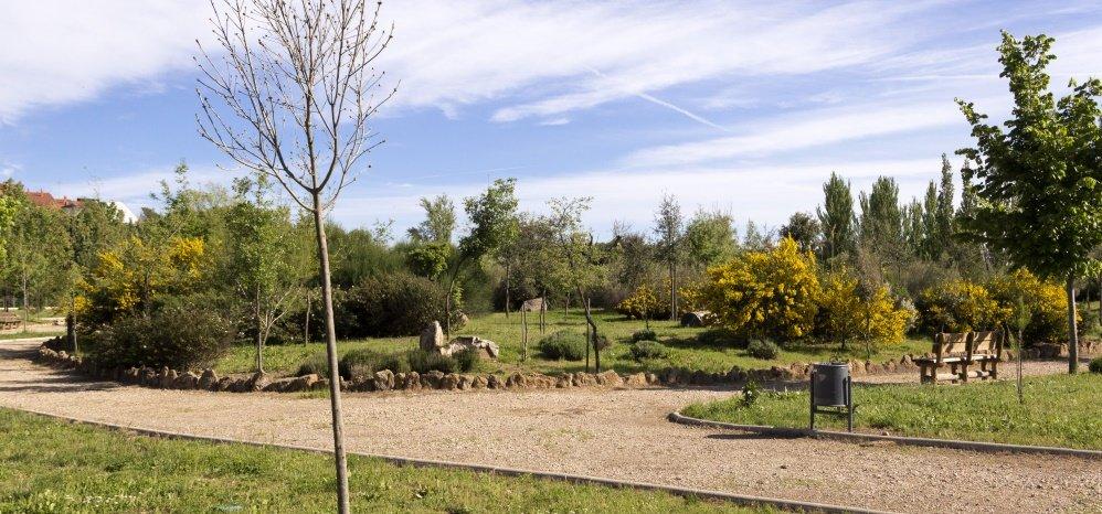 Jardin botanico Prado de las Pavas 2015 (80)