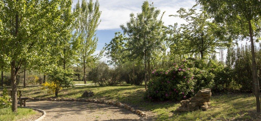 Jardin botanico Prado de las Pavas 2015 (83)